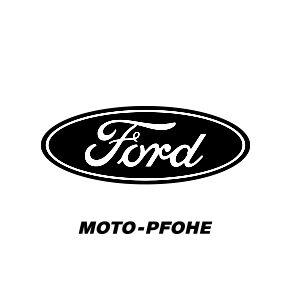logo Ford_BW-gutsandbrainsddb.bg